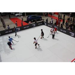 仿真冰板滑冰场体育馆专用冰板图片