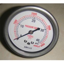 一般压力表厂家直销、成都一般压力表、天康仪表集团(查看)图片