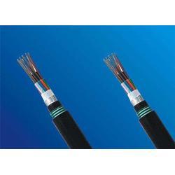 信号电缆直销_济南信号电缆_天康仪表集团图片