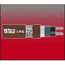 亚泰龙热控科技公司-华北博太科电伴热图片