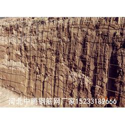 钢筋网 护坡钢筋网片对岗南 黄壁庄提闸放水防护堤坝 钢筋网厂家图片
