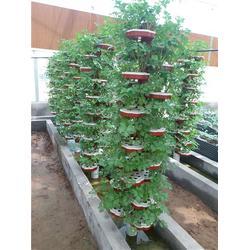 阳台种菜无土栽培设备、寿光九润、舟山无土栽培设备图片