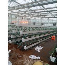 农业无土栽培种植槽、吉林无土栽培种植槽、寿光九润图片