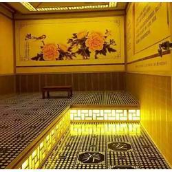 纳米汗蒸加盟费多少钱,纳米汗蒸,北京纳米安然科贸图片