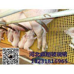 养猪格栅的颜色图片