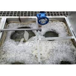 腌制食品污水处理厂家-漓源环保-湛江腌制食品污水处理图片