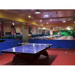 儿童乒乓球假期培训中心|杨文豪体育|乒乓球假期培训图片