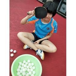 附近乒乓球陪训学校 杨文豪体育(在线咨询) 乒乓球