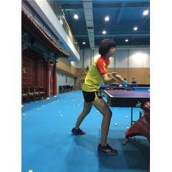 义乌乒乓球夏令营、乒乓球夏令营、杨文豪体育挖掘潜能图片