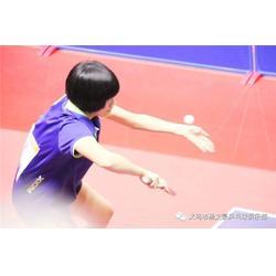 义乌乒乓球培训、杨文豪体育(推荐商家)图片