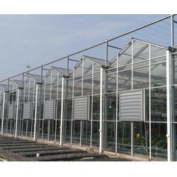 北京农业智慧大棚建造|农业智慧大棚建造|瑞众农业图片