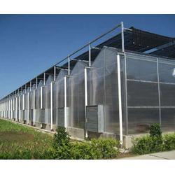 北京溫室大棚設計-瑞眾農業-溫室大棚設計圖片
