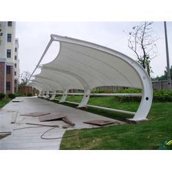 户外膜结构车棚、【伟豪膜结构】、湖州膜结构车棚图片