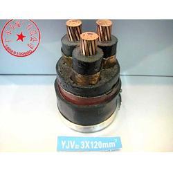 yjv电缆订制,yjv电缆,广东电缆(查看)图片