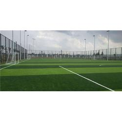 樟树市人造草坪、辉跃体育设施有限公司、人造草坪图片