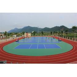 塑胶跑道、宜春市塑胶跑道、辉跃体育设施有限公司(优质商家)图片