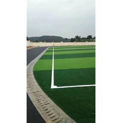 景德镇人造草坪,人造草坪,辉跃体育设施有限公司(查看)图片