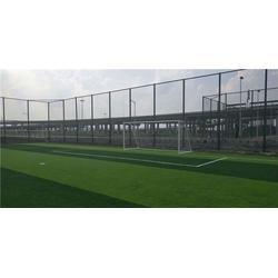 辉跃体育设施有限公司、南昌市人造草坪、人造草坪图片