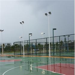 鹰潭市球场灯柱-辉跃体育设施有限公司(在线咨询)球场灯柱图片