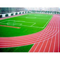 塑胶跑道-鹰潭市塑胶跑道-辉跃体育设施有限公司(优质商家)图片
