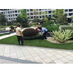 广州美都清洁服务(图)_肇庆乡道垃圾处理_乡道垃圾处理图片