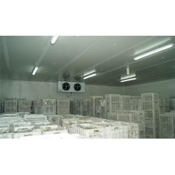 冷库工程公司、康尚(在线咨询)、陵水冷库工程图片