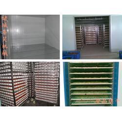 广西农产品网带式烘干机多少钱(在线咨询)图片