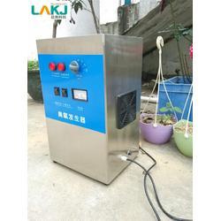 蓝奥臭氧发生器厂家-工业臭氧发生器厂家-铁西区臭氧发生器厂家图片