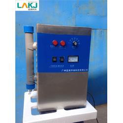 广州蓝奥臭氧值得信赖-北京小型臭氧发生器图片