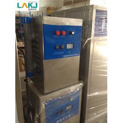 小臭氧发生器-蓝奥环保(在线咨询)-小臭氧发生器图片