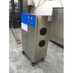 中山臭氧尾气破坏器-蓝奥环保售后保障-臭氧尾气破坏器分解器图片