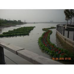 水生植物人工浮岛、华州环境工程(在线咨询)、安徽浮岛图片
