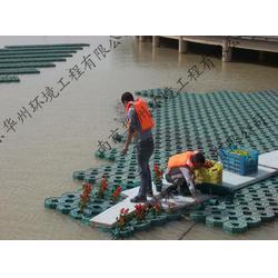 水生植物浮床-宿迁浮床-华州环境工程(查看)图片