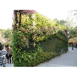 人工浮床-南通浮床-華州環境工程圖片