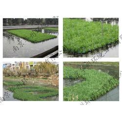 江宁区生态浮岛-华州环境工程-生态浮岛施工图片