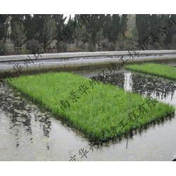 生态浮岛植物、宿州生态浮岛、华州环境工程