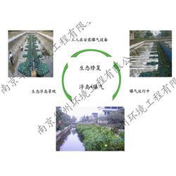 生态浮岛、南京华州环境工程公司、生态浮岛植物图片