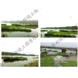 人工浮岛-浮岛-华州环境工程有限公司(查看)图片
