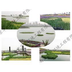 连云港生态浮岛,生态浮岛水生植物,华州环境工程(推荐商家)图片