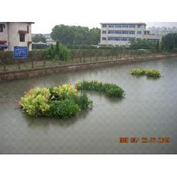 水生植物浮床、南京华州环境工程、淮南浮床