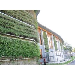 宿州浮岛-华州环境工程公司-水生植物浮岛图片