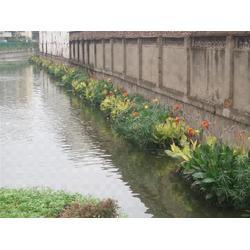 水生植物人工浮岛-宿迁浮岛-华州环境工程图片
