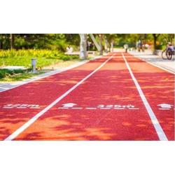 透气型塑胶跑道工程-永臻地坪(在线咨询)透气型塑胶跑道图片
