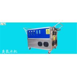 蓝奥环保臭氧生产(图)、臭氧水处理设备定制、臭氧水处理设备图片