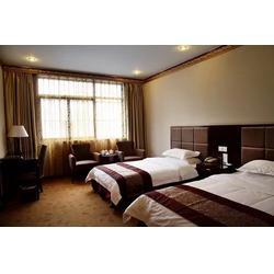 林芝酒店-林芝大峡谷酒店-特价林芝酒店图片