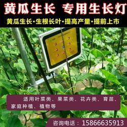 植物灯灯珠-必然科技(在线咨询)河源植物灯图片