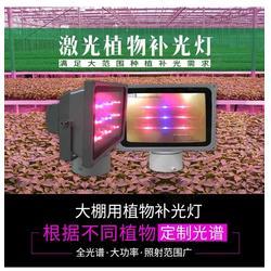 室内植物灯-必然科技-东莞植物灯图片