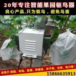 驱鸟器声音-必然科技(在线咨询)芜湖驱鸟器价格