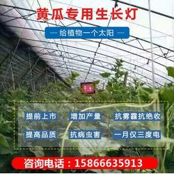 植物灯光谱-肇庆植物灯-必然科技图片