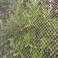 防鸟网支柱-必然科技(在线咨询)濮阳防鸟网图片